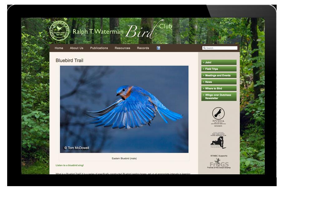 Photo of website for Waterman Bird Club