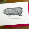 photo of holiday card with christmas Pig
