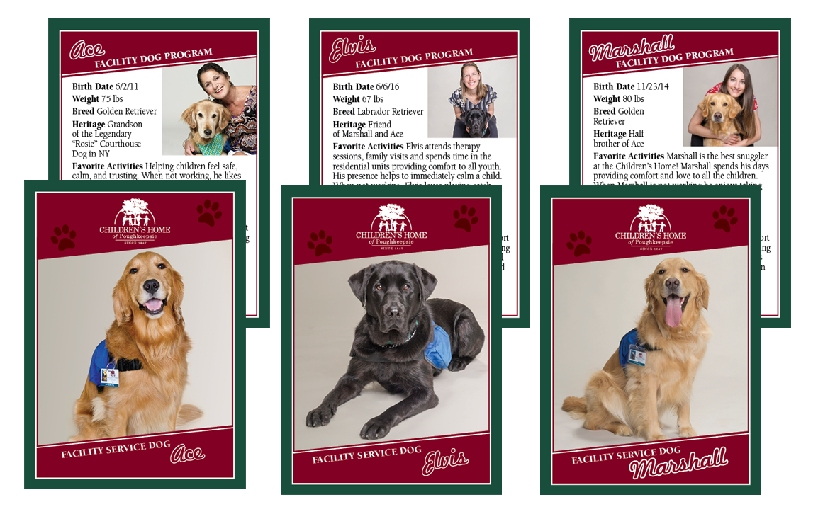 photo of service dog business cards for Children's Home of Poughkeepsie