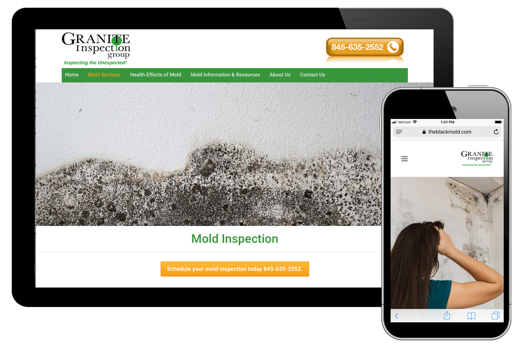 Photo of website for Granite Inspection Group