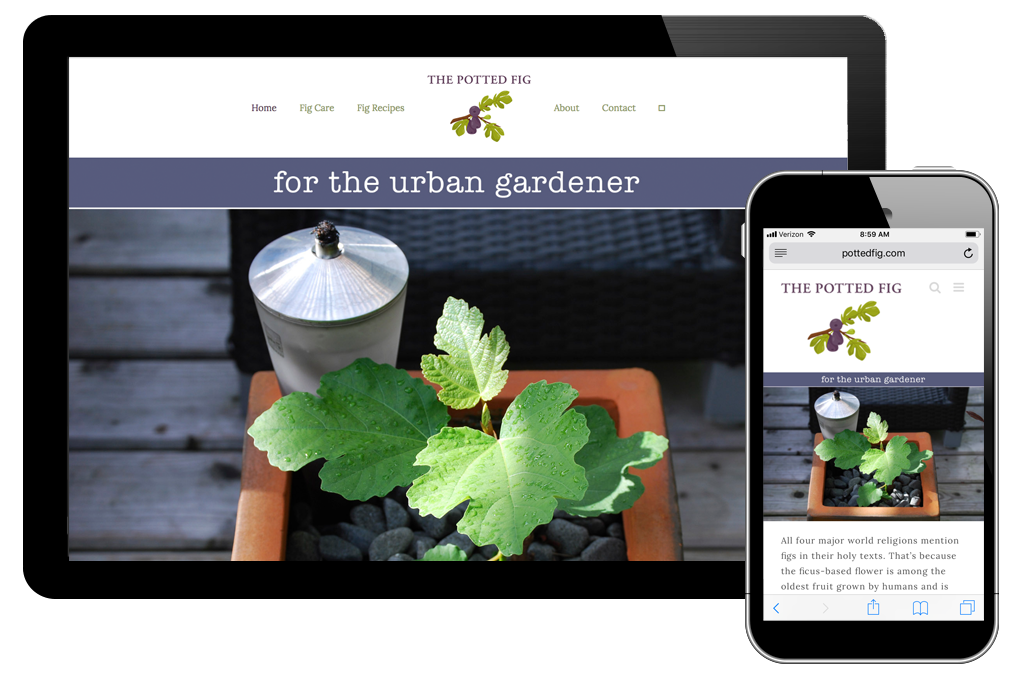 Photo of website for the Potted Fig